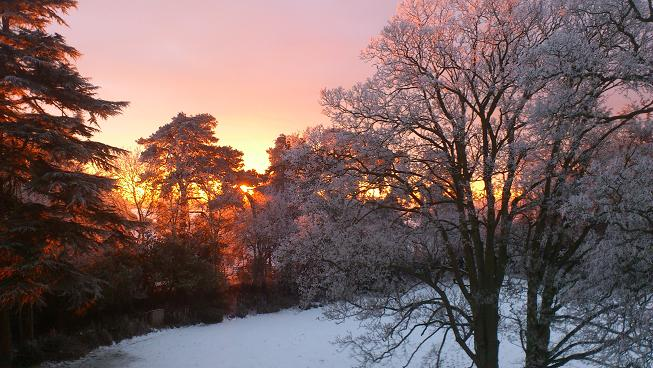 Winter sunrise at Pitsford Hall through rime covered trees following freezing fog the day before. 17th January 2013. 